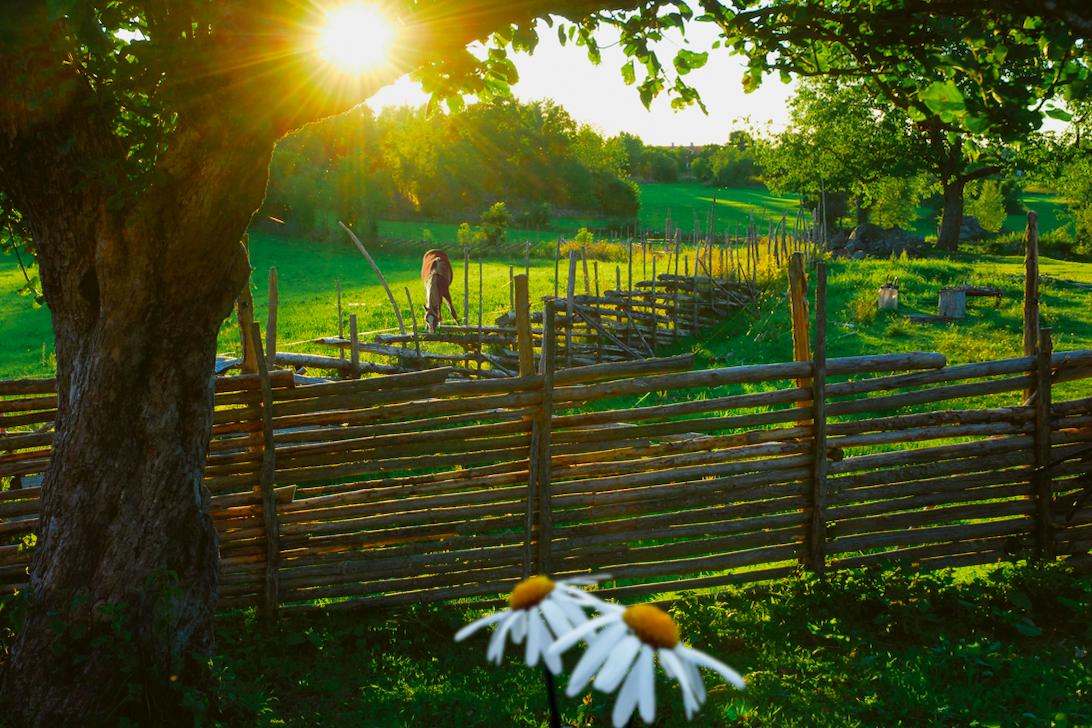 Bo på lantgård och njut av livet bortom stadens brus